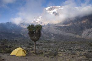Kilimanjaro machame route camping