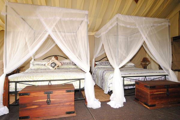 Twin beds Tanzania Bush Camp