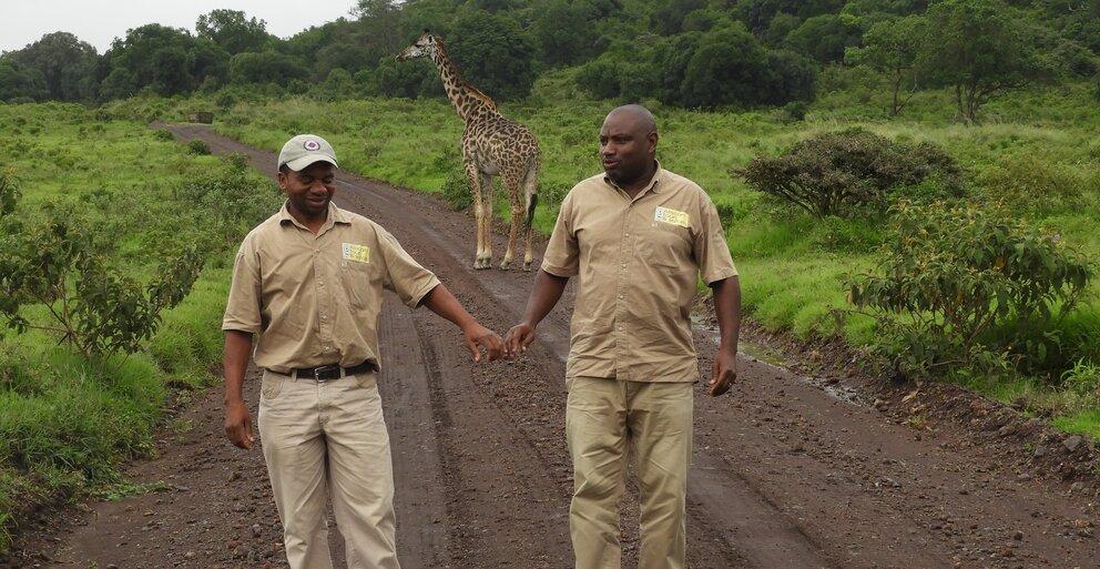 African Tours & safaris safari guides